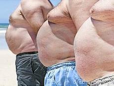 中医肥胖类型