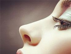 鼻子的美学标准