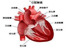 胸膜炎患者需常做的锻炼法